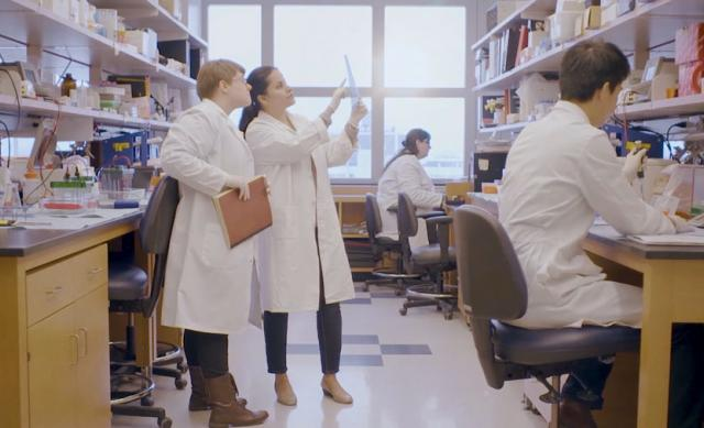 Students work in a lab in a video still from the President's strategic plan videos